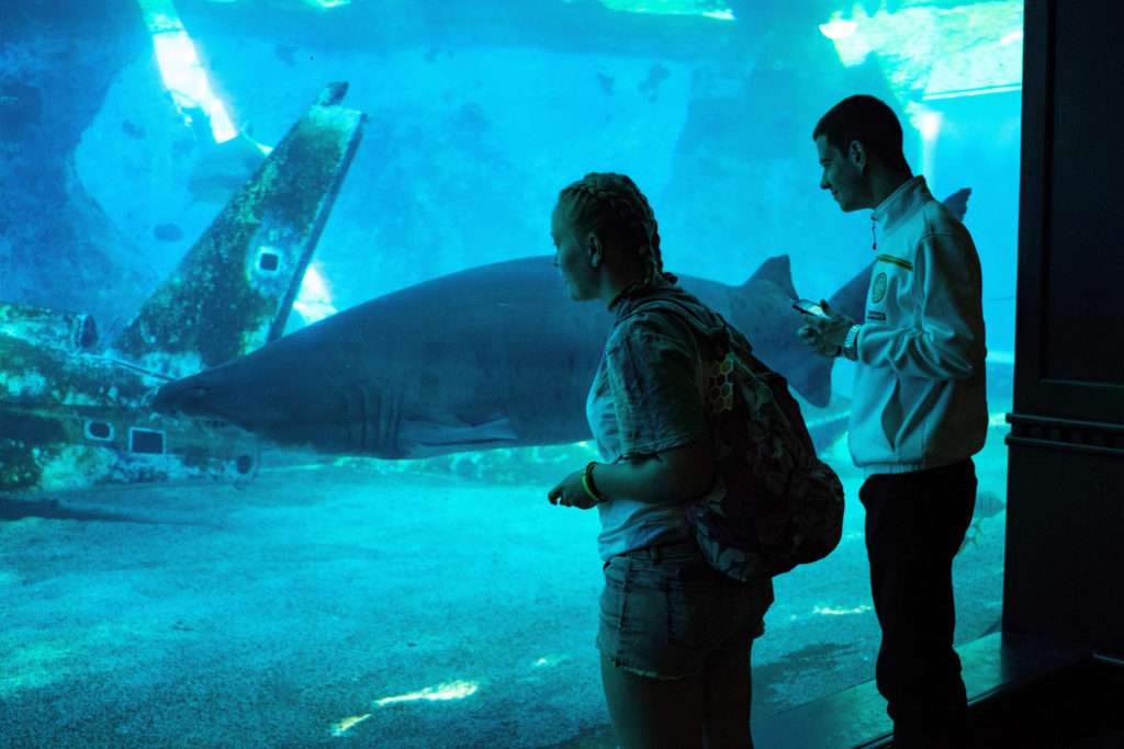 77. Ushaka Marine World Lucy, Steven & Shark: Lucy and Steven look through a glass wall into a blue tank as a shark swims passed.