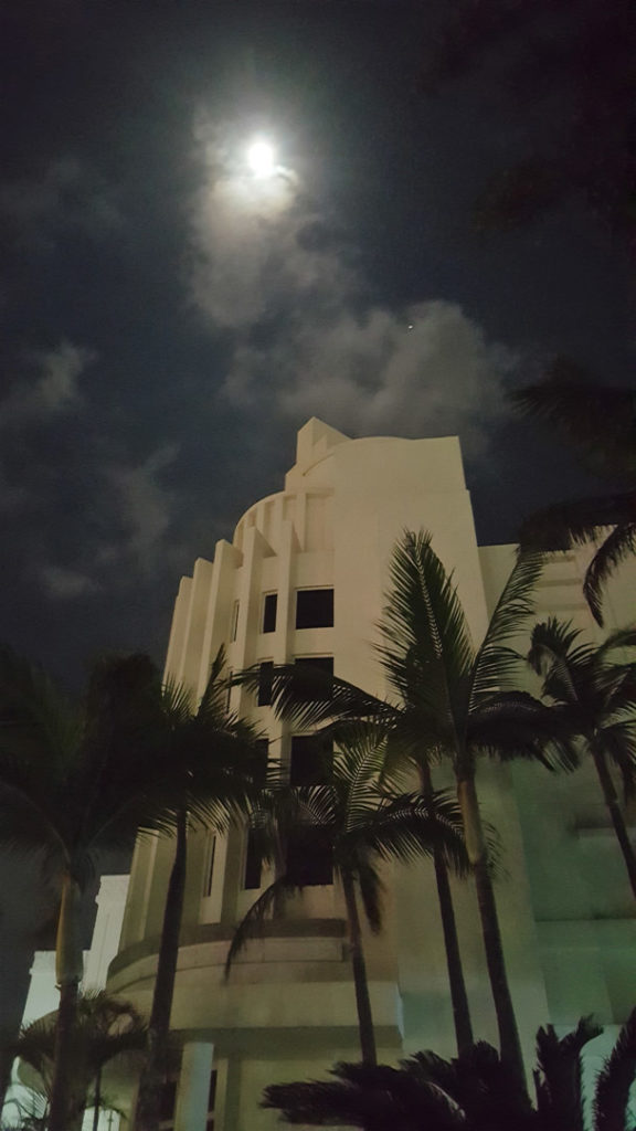 84. Moon over Suncoast Durban: The moon shines through a dark sky with a faint view of clouds. In the fore ground palms trees stand in front of a white art deco building